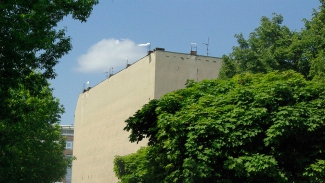 Side Walls / view from the Friederichstrasse